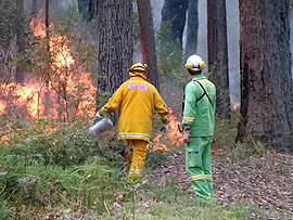 Labor fails to protect forest firefighters and country communities